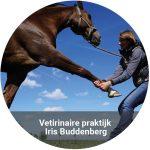 Vetrinaire Iris Buddenberg